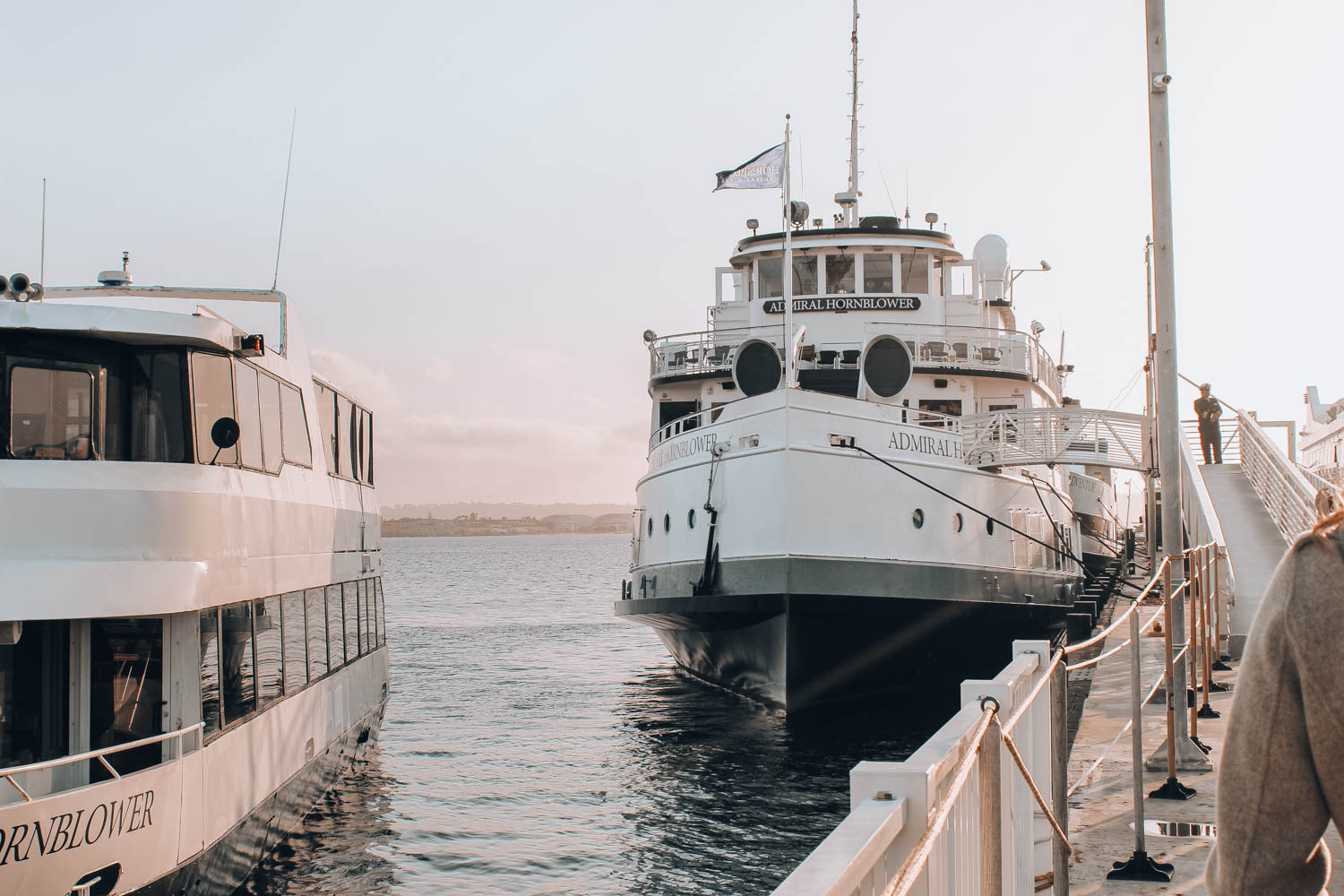 travel-guide-san-diego-recommendations-hornblower-cruise